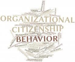 thesis on organizational citizenship behaviour